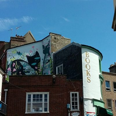 The cats in the walls mural in Norwich
