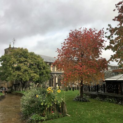 Autumn at St Stephens