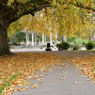 Chapelfield Gardens in Autumn