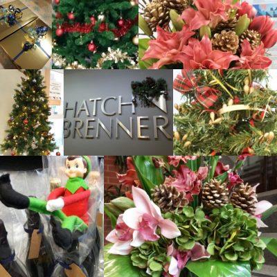 Christmas in Norwich