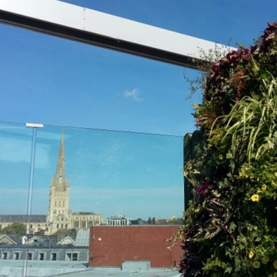 View from the Rooftop Gardens in Norwich