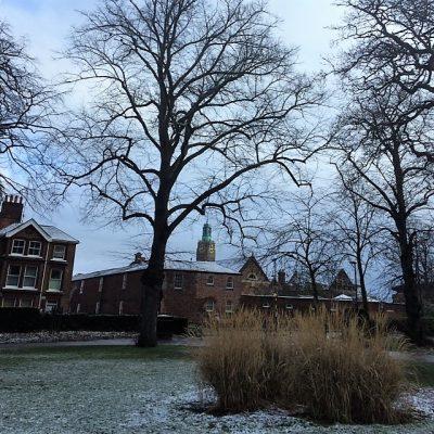 Snowy Rooftops in Norwich