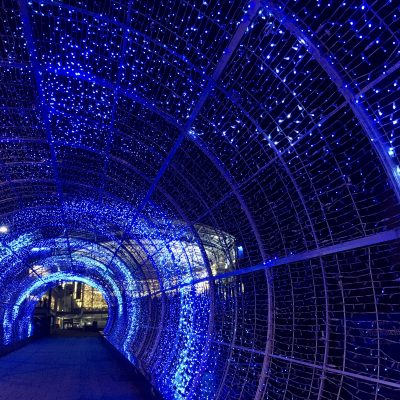 Tunnel of Light 2019